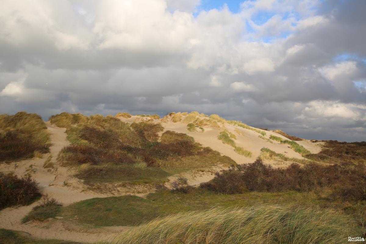 Dunes de la Mollière. Janvier 2016