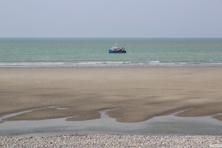 Pêche côtière à Cayeux-sur-Mer : l'Ocra. Avril 2016