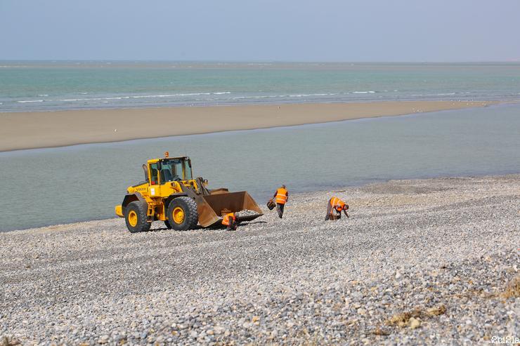 Prélèvements côtiers de galets, Cayeux-sur-Mer, mars 2016
