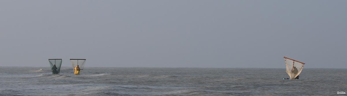 Pêcheurs au pousseux. Cayeux-sur-Mer. Mars 2016