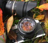 """Concours photo : """"Cayeux, couleurs d'automne"""""""