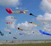 Du soleil, du vent, des cerfs-volants épatants !