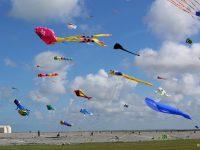 20ème édition du festival de cerfs-volants de Cayeux-sur-mer