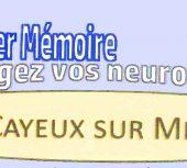 Atelier mémoire : bougez vos neurones !