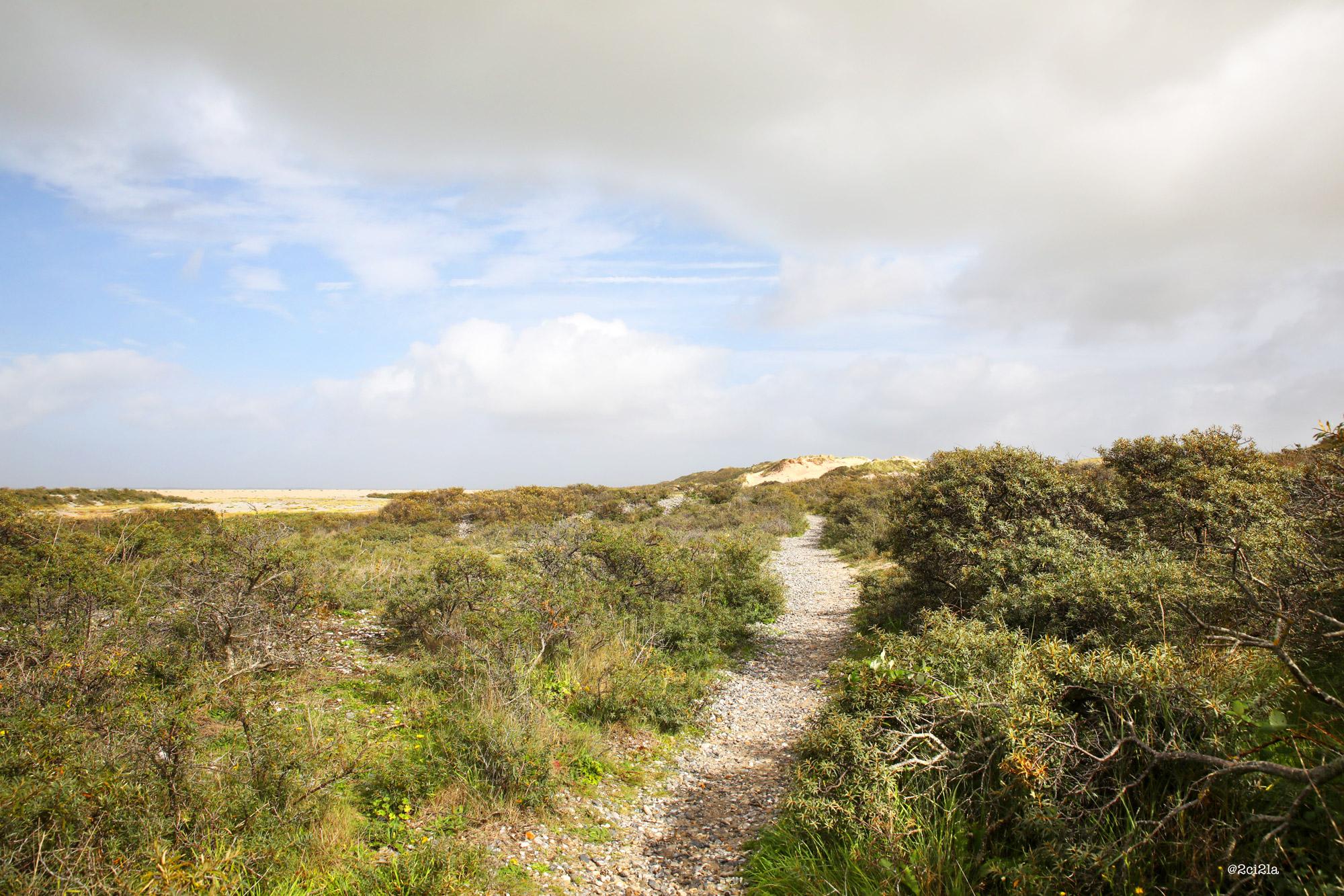 Sentier littoral entre Cayeux-sur-mer et la Mollière